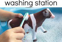 Animal teaching