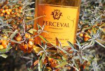 PERCEVAL / PERCEVAL  est un effervescent inspiré par son pays   au carrefour de la route des thés de baie de Seine,  des argousiers sauvages du littoral, et des pommiers de Normandie. Elaboré par infusion d'un grand thé de printemps,  dans un moût de pommes et d'argouses, PERCEVAL s'adresse à toutes les amateurs d'apéritifs sans alcool