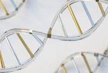 DNA, Nutrition & Lifestyle