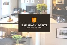 Your Next Place (For Rent) / A sneak peek at some of our premium apartments for rent in Winnipeg, MB, Canada! The perfect place for young professionals, students, downtown dwellers or downsizing couples #Winnipeg