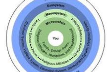 Bronfenbrenner's Ecological Theory.