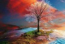 Beautiful Colours