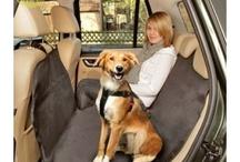 Accessoires Chien / Accessoires pour chiens à découvrir sur www.lesamisdeceline.fr !