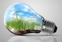 Light bulbs art