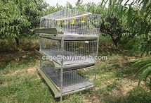Quail Cage / Material: low carbon steel wire  2. surface treatment: electro galvanized 3. Wire Diameter: 1.8mm-2.3mm-3.5mm