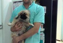 News at Noble Veterinary Clinic