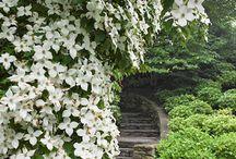 jardins secretos