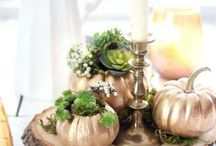 Fall / Decorate or make for Fall Season