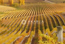 Akarua Ltd / Akarua Vineyard & the Team