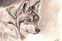 kreslíme zvířátka/draw animals