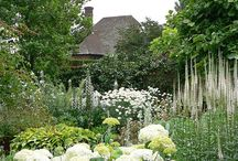 English Gardens and Gardeners / Gardens in England, people who garden and plants they plant