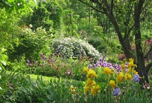 La Traversina Garden