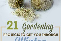 Gardening to Farming how to