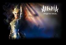 Cirque du Soleil  / by Cynthia Rios