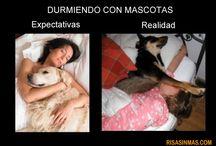 Humor...muuuuy necesario / by Ana Maria CR