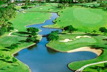 Golfcation