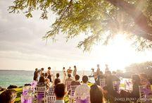 Kona wedding photography / by Alisa Phathanapirom