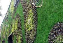 grønne vegger