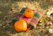 Jesienne klimaty | Autumn atmosphere