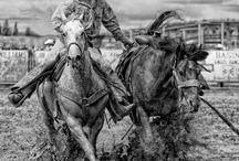 vida rancho