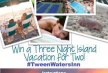 Pin It to Win It Contest / A Pin It to Win It contest from 'Tween Waters Inn Island Resort on Captiva Island Florida. Create a board. Pin 5 dream vacation images. Be entered to win a 3-night vacation! http://tween-waters.com/pin-it-to-win-it-at-tween-waters-inn/ / by 'Tween Waters Inn