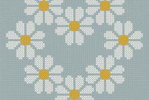 daisy stokrotka i inne kwiaty