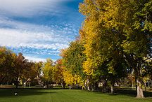 Your CSU Campus / Take a virtual tour of the beautiful Colorado State University campus!