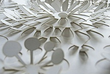 Paper Art / by Amy Rees