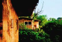 Tree House Resorts In India / Branch out on your next trip by staying at a tree house resort and break free of travel's predicable stops and well-travelled routes. Perfect for an intimate romantic getaway or a fun family adventure, a weekend spent in a leafy hideaway will leave you with an experience unique and exceptional.   To book Now Call (Minar Travels India) : +91-11-43368700