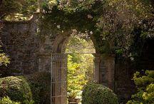 Garden / by B Schultz