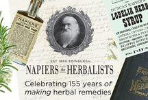Vintage Napiers ~ Victorian Herbal Medicine