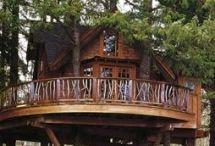 Tree house's.