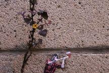 Cualquier Verdura y el arte en las calles