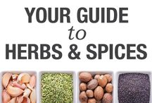 MBG-Food-Spice / Spices