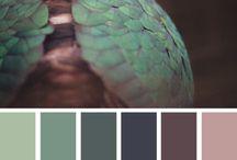 szín portrék
