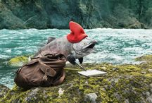 Travel Oregon Salmon / Have you ever wanted to tour Oregon with a robot fish? Me neither, but here we are.