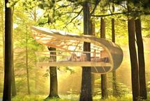 Tree house / Tree house  Modern tree house Sky walks