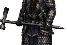 dwarf_fighter/paladin
