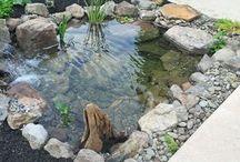 Jezírka-voda na dvorku
