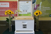 Share the Buzz / Are you a honeybee steward? We are! Check out this cool program we participate in with Whole Foods to Share the Buzz.