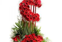 Online Flower Delivery in Delhi with Quick Shipping