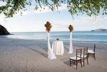 AF: TROPICAL BEACH TO TREES WEDDING