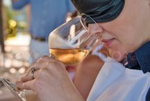 Gastronomy event on the Costa del Sol Paella cooking class+blind wine tasting + olive oile tasting / #Gastronomy event on the Costa del Sol Paella cooking class+blind wine tasting + olive oile tasting
