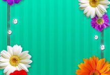 0Wallpaper - Flowers / Phone & Desktop Backgrounds  Flowers