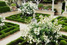 Ogród na planie kwadratu
