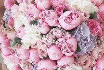 Květiny