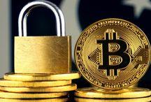Daily Bitcoin News