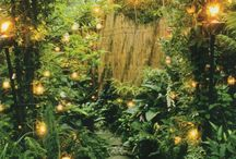 Twilight Garden / Book