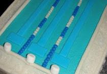 Swim Team ideas / by Tonya Paul
