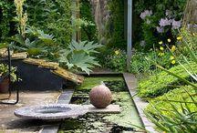 jardin & bassins